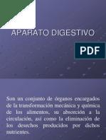 13. Aparato Digestivo Tubular (W.a)