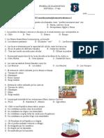 5° HISTORIA - PRUEBA DE DIAGNOSTICO
