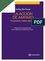 La Acción de Amparo - Proceso Penal y Materia Migratoria