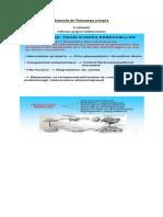 4Ãme-AnnÃe-Cours-Pathologie-MÃdicale-HÃmostase