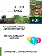 CLASE 1 agricultura organica