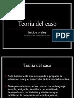 2.3) TEORIA DEL CASO
