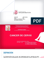 17 Ppt Cancer de Cervix