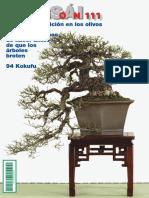 8-20-bonsai_