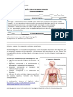 5°-básico-Ciencias-Naturales-Guía-7-Valeria-Bravo