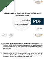 Ponencia_Presentacio_n_Antecedentes_PMSMB