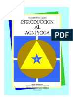 vba-introduccion-agni-yoga1