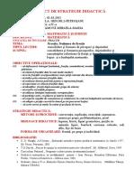Fractii Proiect de Strategie Didactica