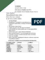 BORRADOR CLASES DE PEQUEÑOS RUMIANTES