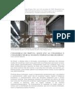 RIBEIRO - Curadorias Em Disputa Quem Sao as Curado