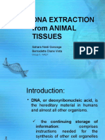 DNA EXTRACTION from ANIMAL TISSUES