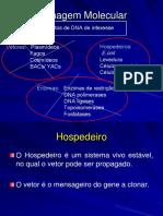 Células Hospedeiras