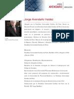 CV Jorge Avendaño Valdez