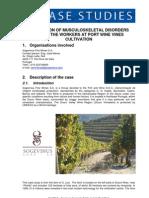 MSDs-at-Port-Wine-vines-cultivation_PT