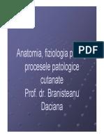 Anatomie fiziologie a pielii