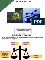celulas y salud 2011