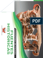Fichas  Históricas 1