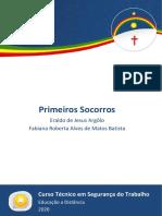 eBook SEG - Primeiros Socorros [ETEPAC 2021]