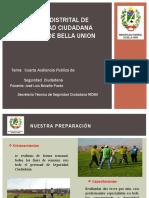 DIAPOSITIVA DE SEGURIDAD CIUDADANA 1