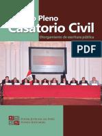 Noveno_Pleno_Casatorio_Civil_Otorgamiento_de_escritura_publica