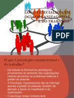 Psicologia Organisacional