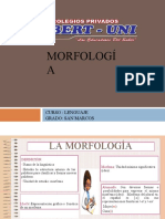 Morfologia San Marcos