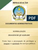 NORMALIZAÇÃO e Docs Administ