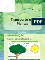 1 ºPPT- Transporteplantas (1)