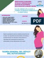 Teoria de Orem Aplicada a Intervenciones Durante Embarazo-1