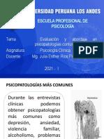7. EVALUACIONES PSICOPATOLOGICAS