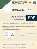 glicolise e gliconeogenese apresentação ok