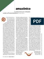 Eldorado Amazonico