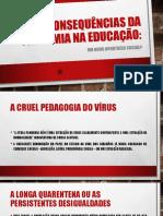 Hildon_as Consequencias Da Pandemia Na Educacao