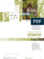 Buenas prácticas en manejo de sésamo - PortalGuarani.com