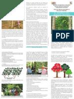 El Manejo Del Bosque Nativo - PortalGuarani.com