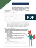 CC101-S4+-+Puntos+esenciales
