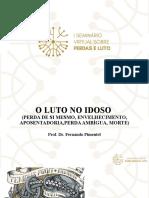 Palestra Luto no Idoso (formato seminário)