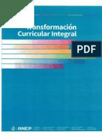 Plan de transformación curricular integral