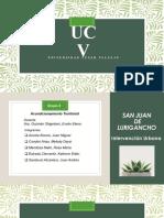 Intervencion Urbana Hilarion San Juan de Lurigancho