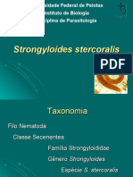 fdocumentos.tips_16-aula-strongyloides-stercoralis