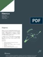 Sinerya presentacion