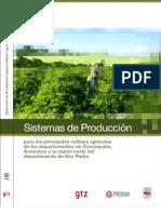 Sistemas de Producción - PortalGuarani.com