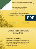 Unidad II Problematicas Normativas ALUMNOS 2015