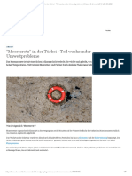 ″Meeresrotz″ in der Türkei - Teil wachsender Umweltprobleme _ Wissen & Umwelt _ DW _ 09.06.2021