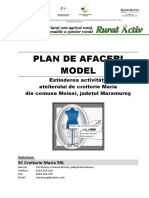 02.Plan de Afaceri Croitorie