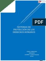 SISTEMAS DE PROTECCIÓN DD.HH
