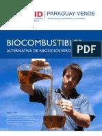 Biocombustibles - PortalGuarani.com