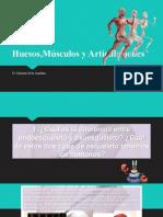 Huesos,Músculos y Articulaciones
