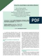 Uso da Enrofloxacina em Psitacideos