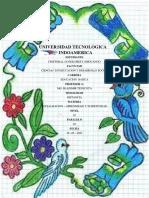 INFORME DE GUÍA DE  PRÁCTICAS-  TAREA DE PAE, SOCIALIZACION
